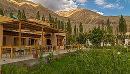 Nubra Ecolodge-Cottage-5