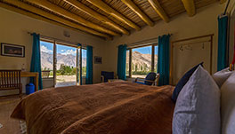 Nubra Ecolodge-Cottage-7