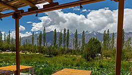 Nubra Ecolodge-Cottage-12