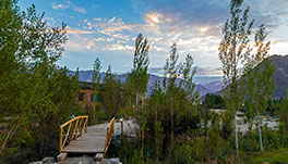 Nubra Ecolodge-dining-1