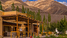 Nubra Ecolodge-Cottage-1