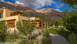 Nubra Ecolodge-Cottage-2