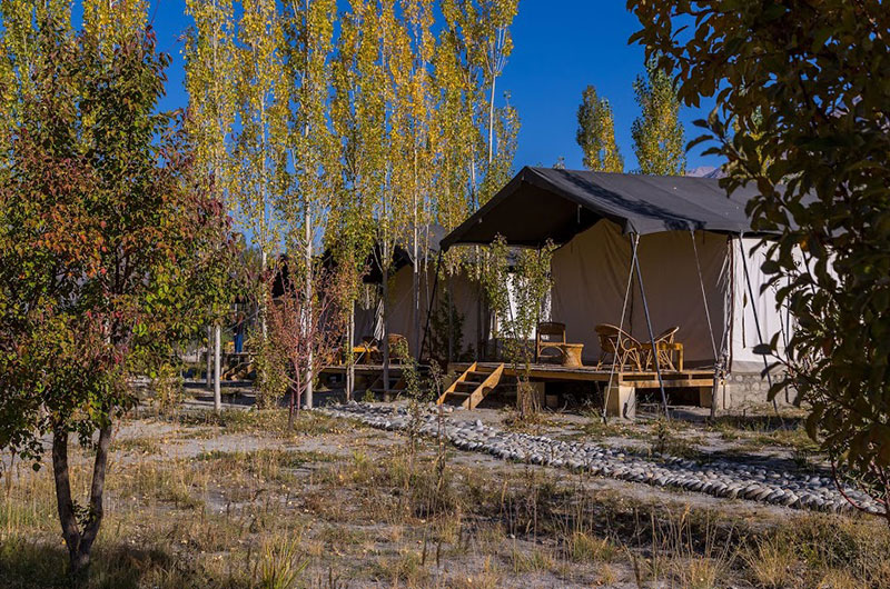 Nubra Ecolodge-Safari Tent6